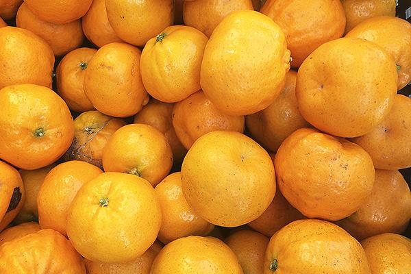 mandarins72