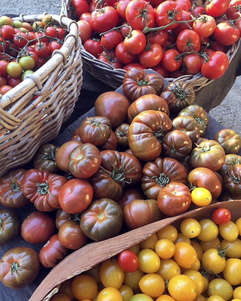 tomatomedley